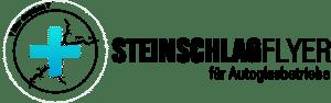 Steinschlagflyer.de - Steinschlagpflaser Karten, Flyer, Anhänger uvm.
